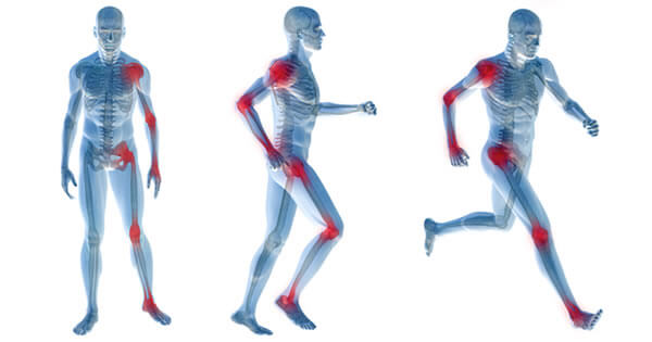 mitos sobre o corpo humano articulações