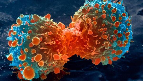 Mitos sobre o câncer