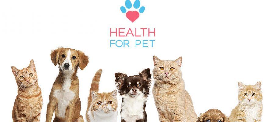 Health For Pet - Conheça Planos e veja Tabelas de Preços